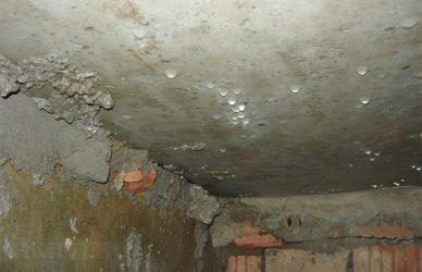 Что положить в подвал от сырости?